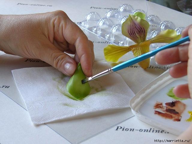 Орхидея Леди Слиппер из полимерной глины64) (640x479, 204Kb)