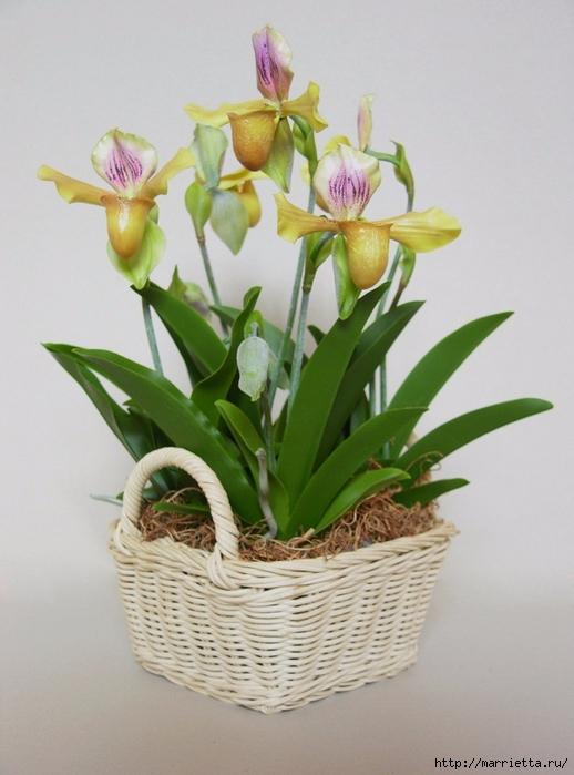 Орхидея Леди Слиппер из полимерной глины. Мастер-класс (99) (518x700, 227Kb)