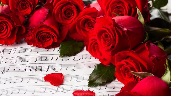 розы (700x393, 380Kb)