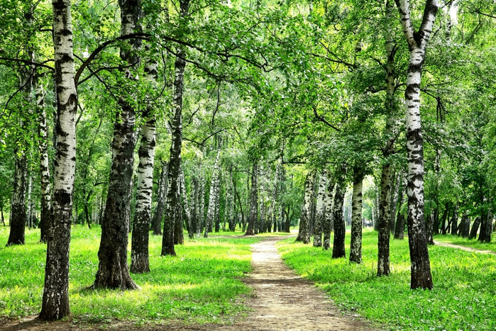 Case Study on the nature vs nurture debate  UK Essays