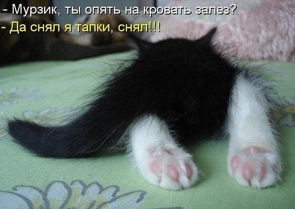 image (2) (604x429, 42Kb)
