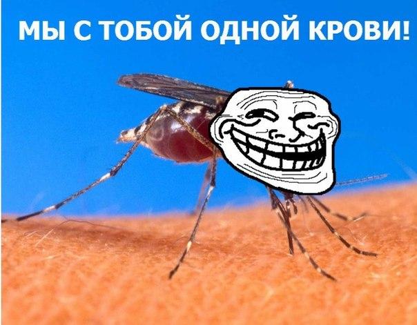 комары-трололо-песочница-удалённое-153849 (604x471, 58Kb)
