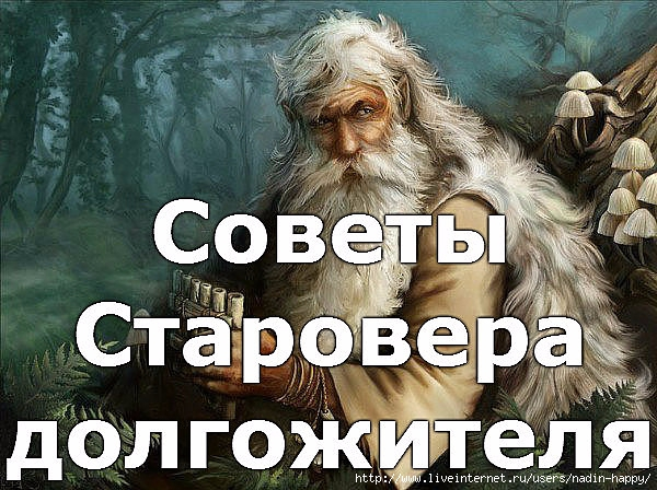 image (600x448, 227Kb)