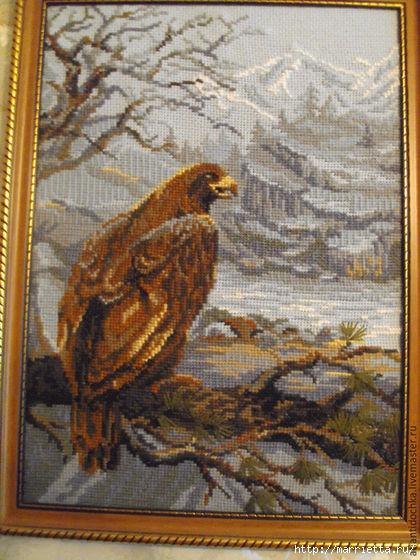 Картина ОРЕЛ. Схема вышивки крестом (1) (420x560, 206Kb)