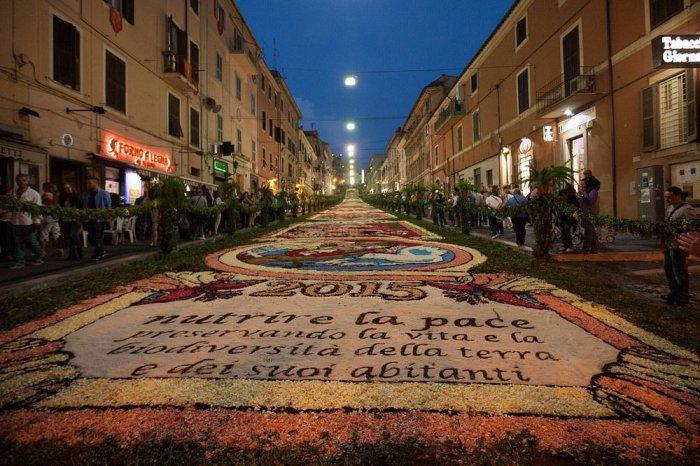 цветочный ковер Infiorata 10 (700x466, 368Kb)