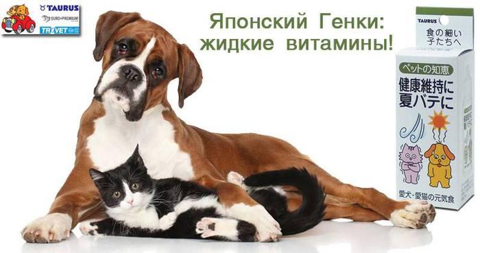 капли от аллергии у собак