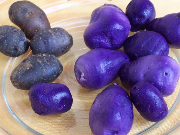 Potatoes_Vitelotte-1024x768 (700x525, 390Kb)