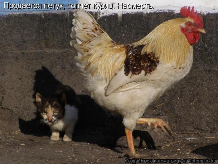 Фото гулящих мам 2 фотография