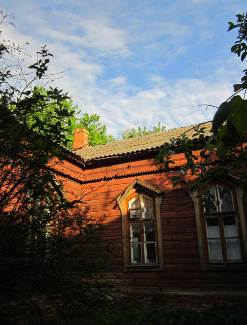 1067597_Pereslavskaya_zemskaya_bolnica_07 (487x640, 119Kb)
