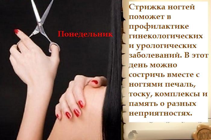 5462122_ponedelnik_oie_2543720BKF28TV6__1 (700x464, 46Kb)