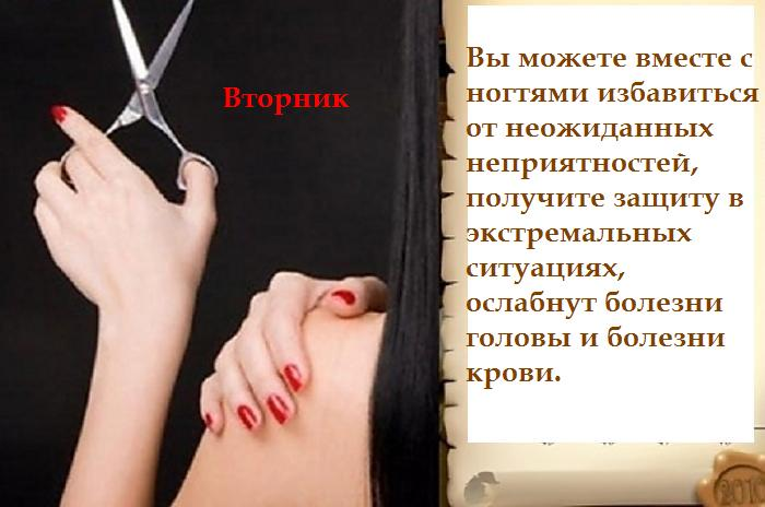 5462122_Vtornik___oie_2543720BKF28TV6__1 (700x464, 42Kb)
