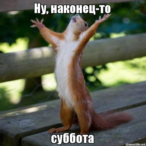 5644427_e9wiyt (600x600, 47Kb)