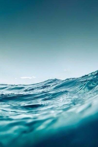 море4 (403x604, 140Kb)