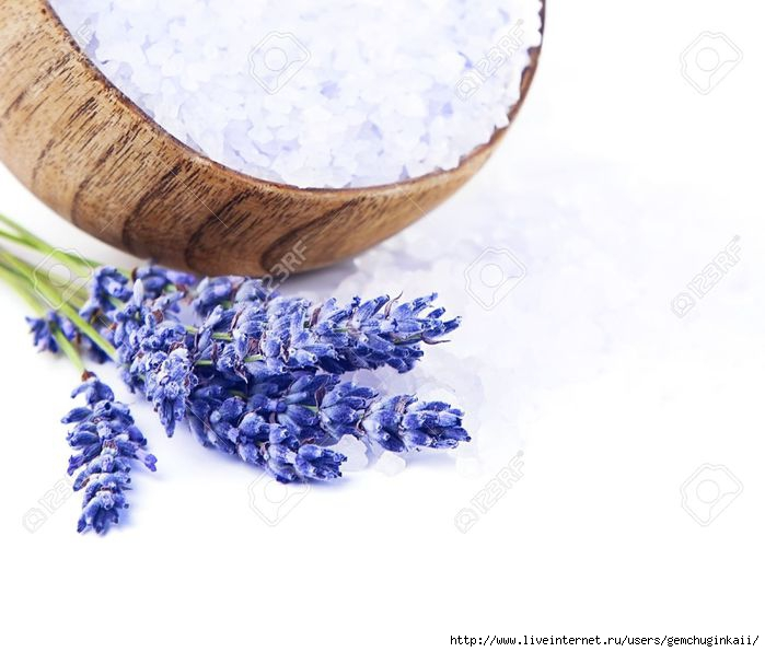 14642496-Fresh-lavender-flowers-and-wooden-bowl-with-salt-isolated-on-white-background-beautiful-purple-flora-Stock-Photo (600x496, 143Kb)
