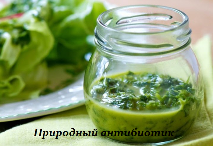 2749438_Prirodnii_antibiotik__ot_vseh_infekcii_mochevogo_pyzirya_i_pochek (700x479, 441Kb)