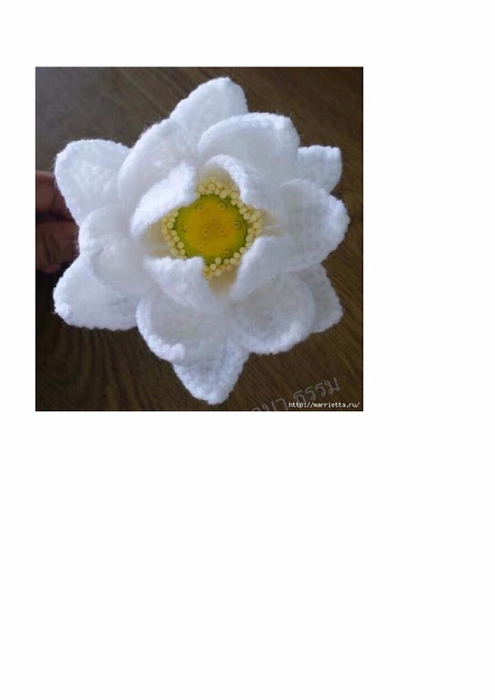 Water Lily Crochet pdf008 (495x700, 117Kb)