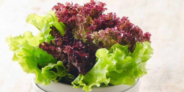 listja-salata (700x350, 39Kb)