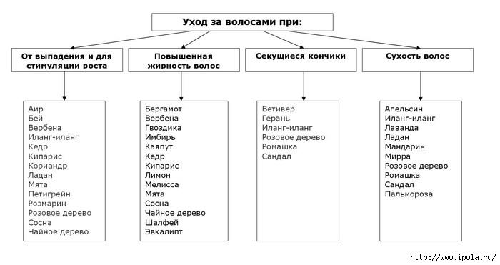 """alt=""""Эфирные масла для роста и красоты волос""""/2835299_Efirnie_masla_dlya_volos_tablica (700x371, 84Kb)"""