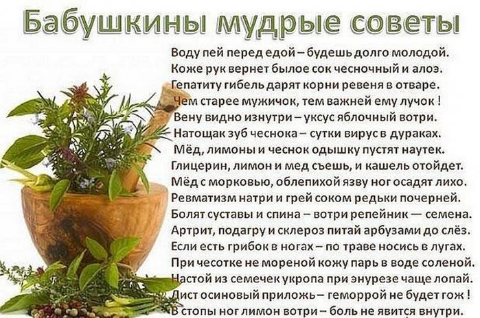 5110516_image_1_ (700x464, 286Kb)
