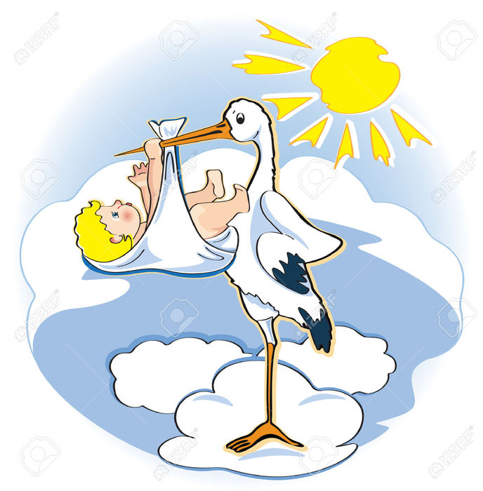 6615422-a-stork-holds-a-baby-in-a-beak-Stock-Photo (688x700, 74Kb)