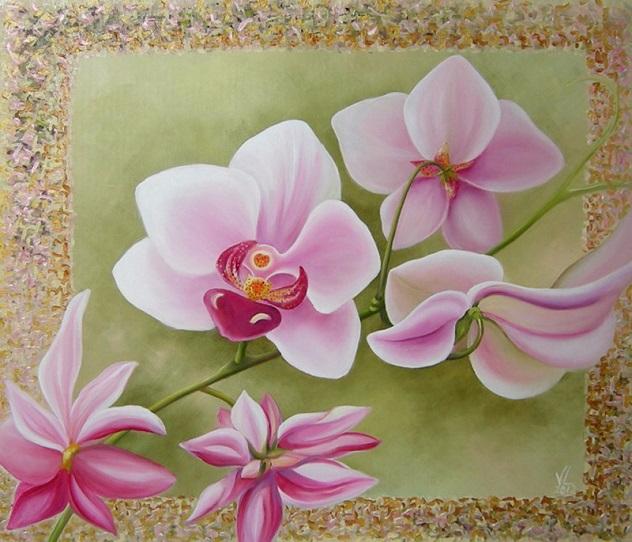 Orchidėjos (632x542, 347Kb)