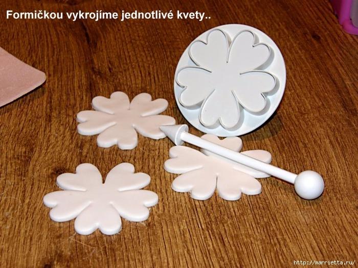 Modelado de masilla de azúcar para las tortas.  flores hermosas.  Clase magistral (2) (700x525, 316Kb)