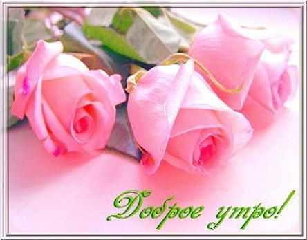 1352547732_dobroe_ytro_kartinki345-14 (600x450, 24Kb)