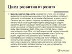 Превью tuur (259x194, 53Kb)
