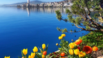 Превью lake-geneva-montreux (700x393, 346Kb)