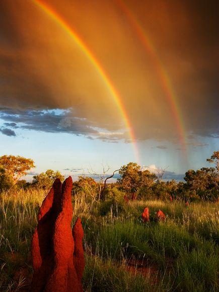 double-rainbow-olson_1565_600x450 (435x580, 221Kb)