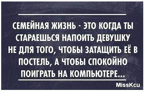 4337340_20160709_154717 (490x310, 232Kb)