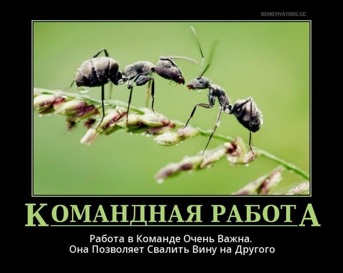 3185107_rabota_v_komande (700x555, 65Kb)