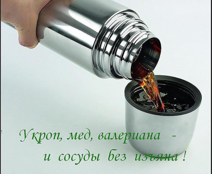 imageCAW0K3K6 (700x575, 112Kb)