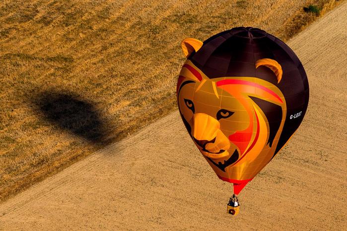 воздушные шары фото 6 (700x467, 531Kb)
