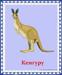 ������ кенгуру (578x700, 264Kb)