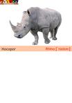 ������ носорог+свинья (489x700, 116Kb)