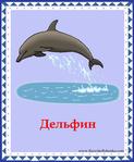 ������ дельфин (578x700, 291Kb)