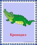 ������ крокодил (578x700, 289Kb)