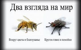 Пчела (284x177, 7Kb)