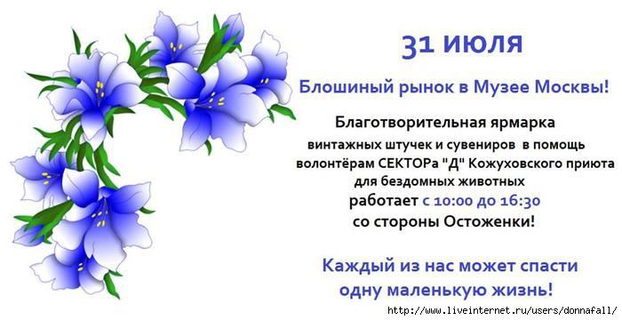3363851_13658950_1016418075079639_8759297914126304397_n (700x360, 119Kb)