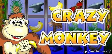 ������� ������� Crazy Monkey