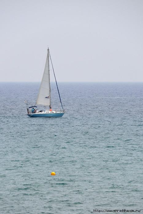 Кипр, Ларнака 2016 (1) (466x700, 178Kb)