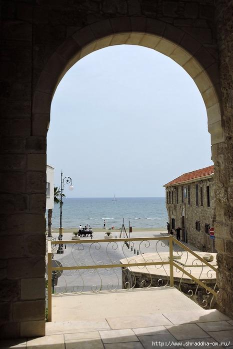 Кипр, Ларнака 2016 (466x700, 182Kb)