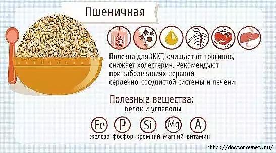 5239983_polza_kashi_pshenichnaya (547x303, 148Kb)