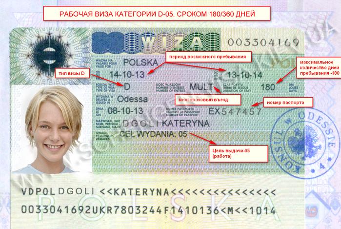Рабочая виза (700x469, 614Kb)