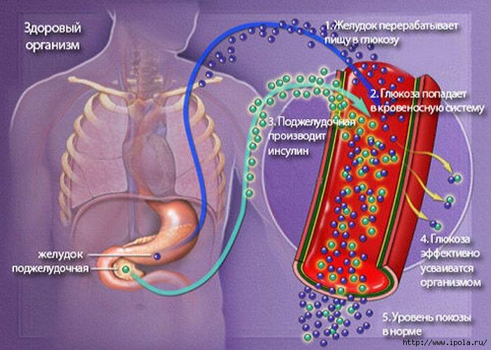 "alt=""Наиболее частые симптомы сахара в крови""/2835299_Izmenenie_razmera_sahar_krovi (700x499, 183Kb)"