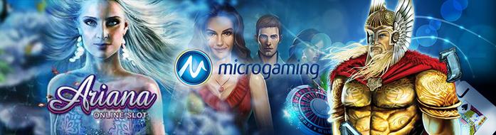 Microgaming (700x190, 105Kb)