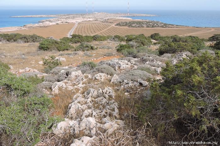 Кипр, май 2016 (146) (700x466, 387Kb)