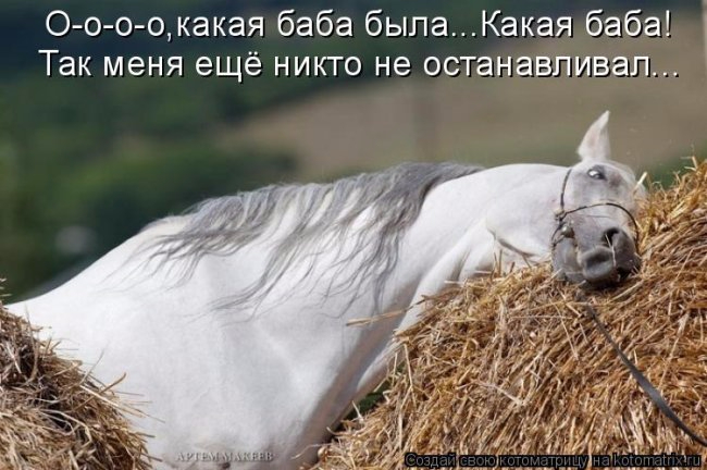 про коня (650x432, 244Kb)