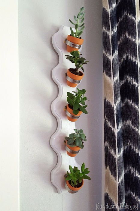 Simple-vertical-succulent-planter-using-hose-clamps-and-tiny-terra-cotta-pots-Sawdust-and-Embryo (466x700, 298Kb)